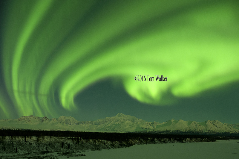 Aurora over Mt. McKinley, #445