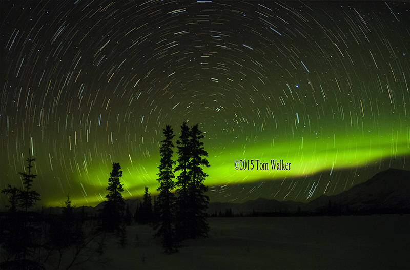 Aurora and Star Trails #215
