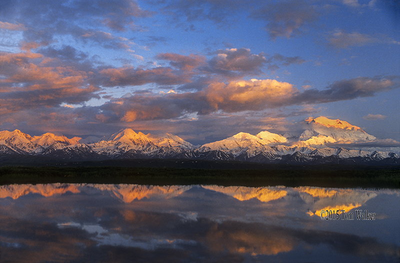 Mt. Denali Reflection, #38036